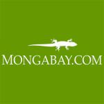 Mongabay-1